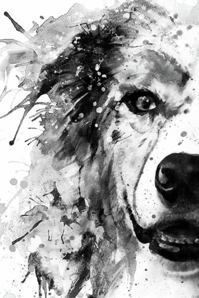 Wall Art - Painting - Australian Shepherd Dog Half Face Portrait by Marian Voicu