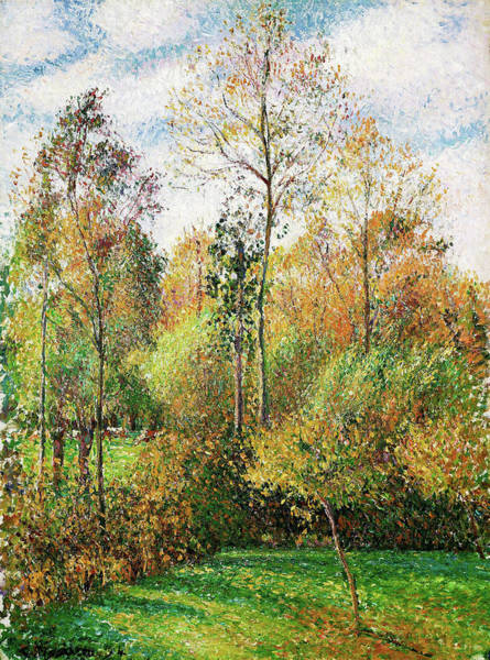 Country Living Painting - Automne, Peupliers, Eragny - Digital Remastered Edition by Camille Pissarro