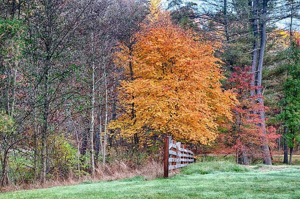 Photograph - Autum Colors by Dan Urban