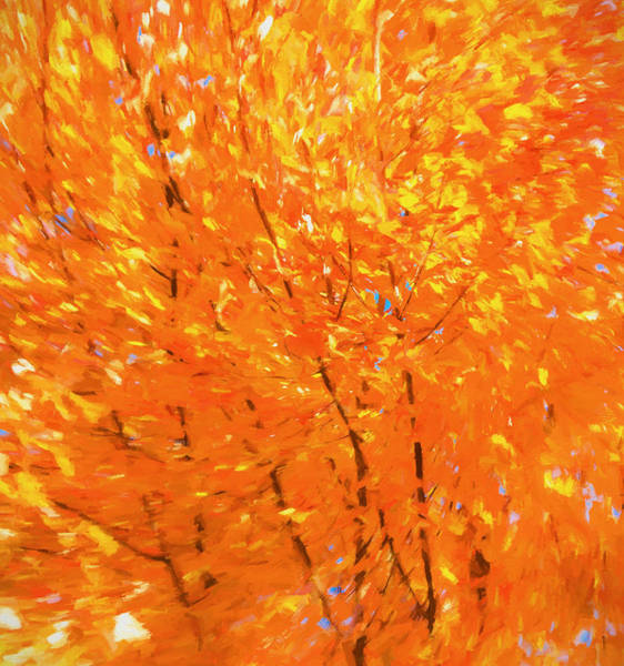 Painting - Autumn Abstract Number 5 by Dan Sproul