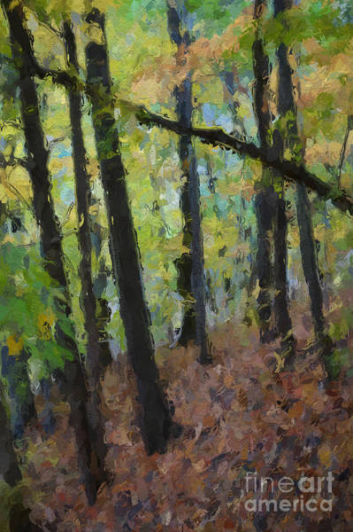 Autumn Afternoon Art Print by David Boudreau