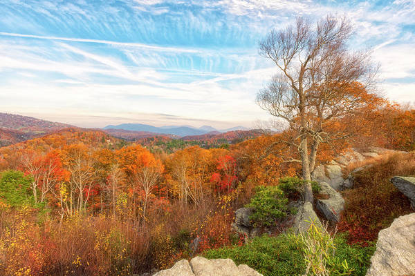 Photograph - Autumn Afternoon by Russell Pugh