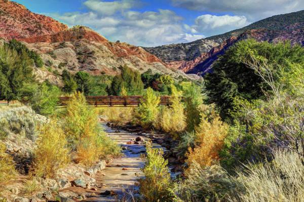 Wall Art - Photograph - Autumn Along Coal Creek Trail by Donna Kennedy