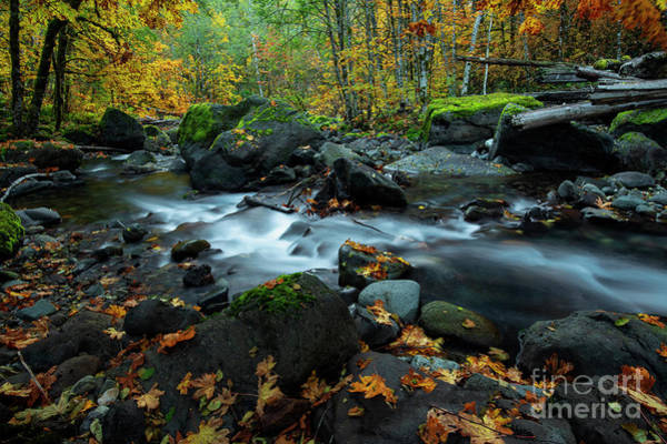 Wall Art - Photograph - Autumn Around The Bend by Mike Dawson