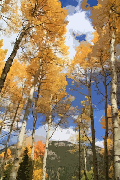 Wall Art - Mixed Media - Autumn Aspens In The Rockies by Dan Sproul