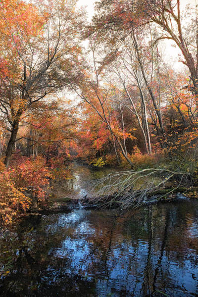 Photograph - Autumn At Berlin Park by John Rivera