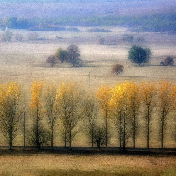 Side-by-side Photograph - Autumn At Blumenthal by Old&timer Imagery