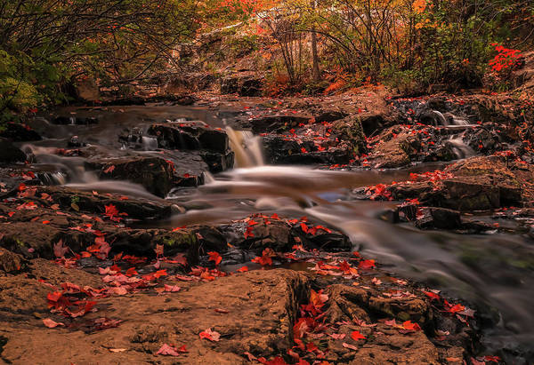 Photograph - Autumn At Duck Brook Falls by Dan Sproul