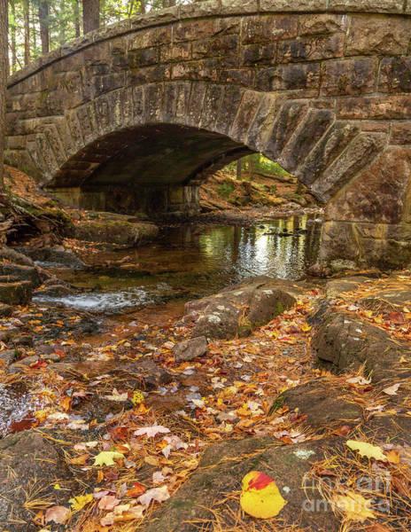 Photograph - Autumn At Hadlock by Karin Pinkham