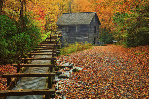 Photograph - Autumn At Mingus Mill by Greg Norrell