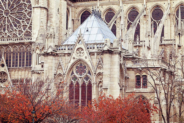 Wall Art - Photograph - Autumn At Notre Dame De Paris by Melanie Alexandra Price