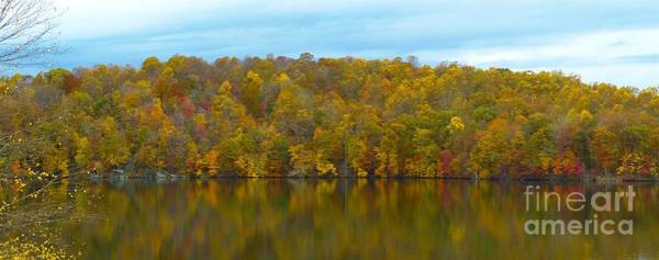 Photograph - Autumn At Prettyboy by Donald C Morgan