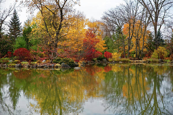 Photograph - Autumn At The Garden by Peter Ponzio