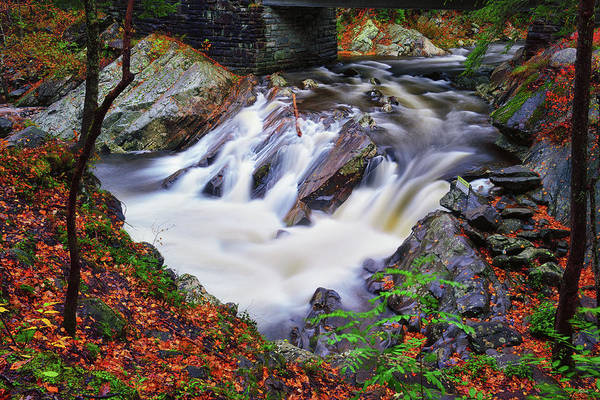 Photograph - Autumn At The Sinks by Greg Norrell