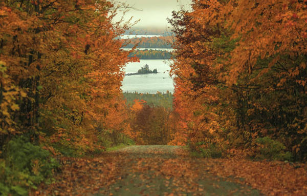 Photograph - Autumn Back Road To Moosehead Lake by Dan Sproul