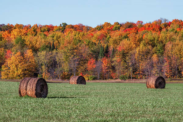 Photograph - Autumn Bales by Todd Klassy