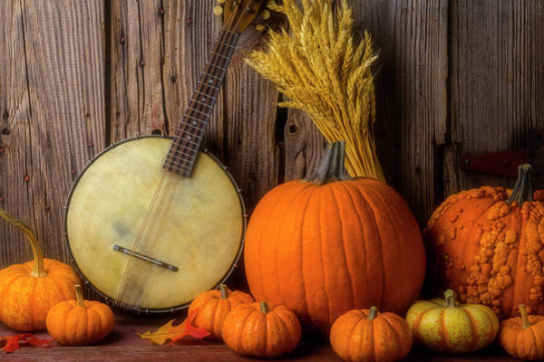 Wall Art - Photograph - Autumn Banjo by Garry Gay