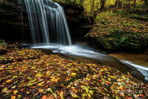 Photograph - Autumn Barton Mill Run Waterfall  by Thomas R Fletcher