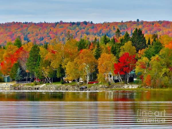 Madawaska Lake Photograph - Autumn Beauty by Vickie Ketch