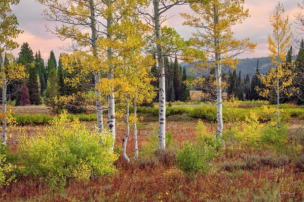 Photograph - Autumn Beginning  by Leland D Howard