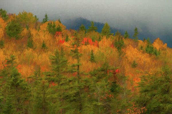 Wall Art - Painting - Autumn Beginnings In New Hampshire by Dan Sproul