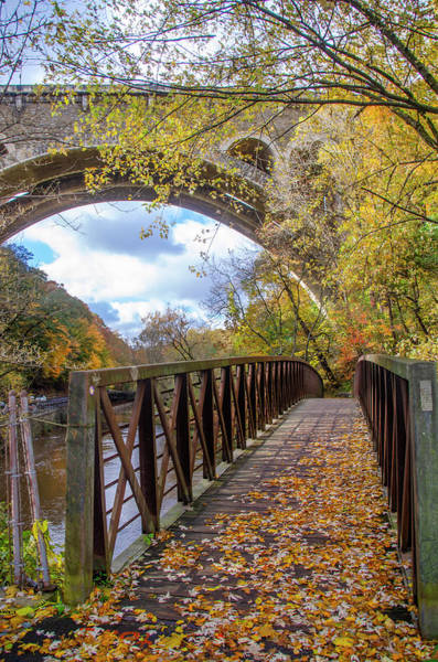 Wall Art - Photograph - Autumn - Bow Bridge Under The Henry Avenue Bridge by Bill Cannon
