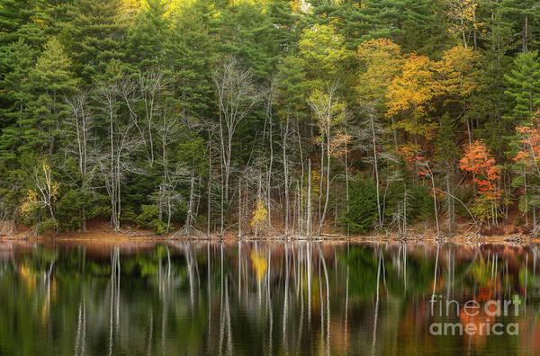 Photograph - Autumn Breath by Karin Pinkham