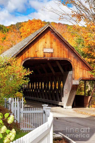 Photograph - Autumn Bridge by Brian Jannsen