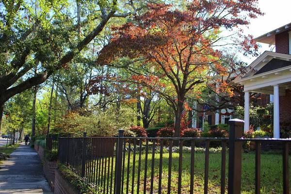 Photograph - Autumn By The Sidewalk by Cynthia Guinn