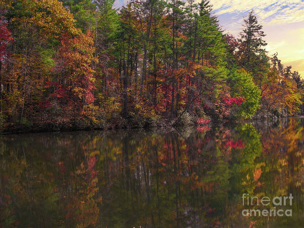 Photograph - Autumn Color - North Carolina by Dale Powell