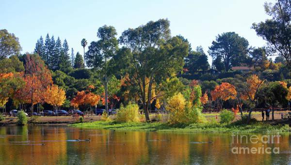 Wall Art - Photograph - Autumn Color Surround Vasona Lake Los Gatos California  by Chuck Kuhn