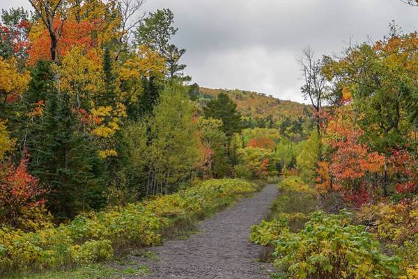 Photograph - Autumn Colors At Hunter's Point Park by Susan Rydberg
