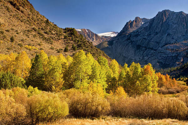 Photograph - Autumn Colors In The Sierra Nevada Mountains by Waterdancer
