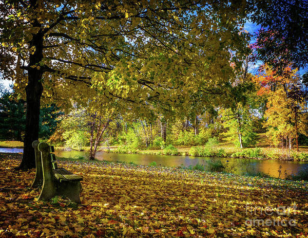 Photograph - Autumn Colors In Woodbury by Nick Zelinsky