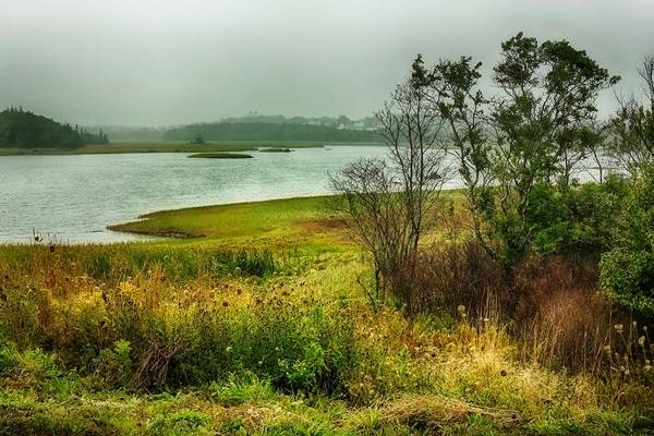 Photograph - Autumn Colors On Acadian Trail by Tatiana Travelways