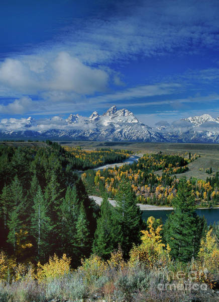 Photograph - Autumn Colors Snake River Overlook Grand Tetons National Park Wyoming by Dave Welling