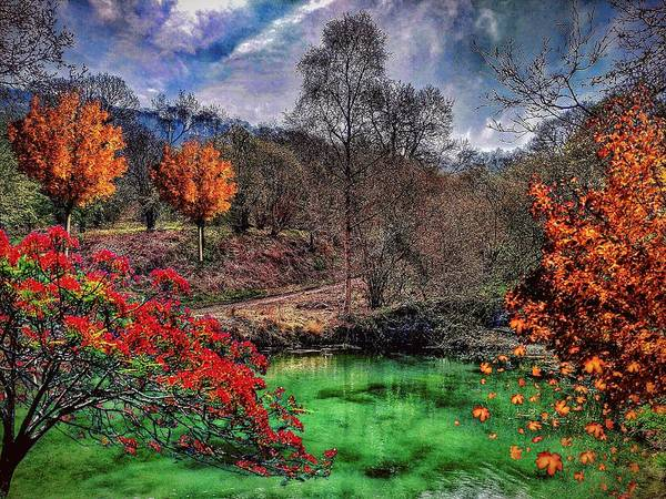 Photograph - Autumn Colour by AE collections