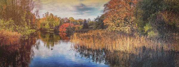 Photograph - Autumn Colours by Alan Campbell