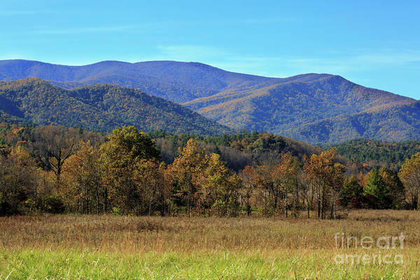 Wall Art - Photograph - Autumn Colours In Great Smoky Mountains National Park by Louise Heusinkveld