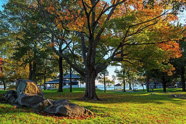 Photograph - Autumn Day In The Salem Willows Salem Ma by Toby McGuire