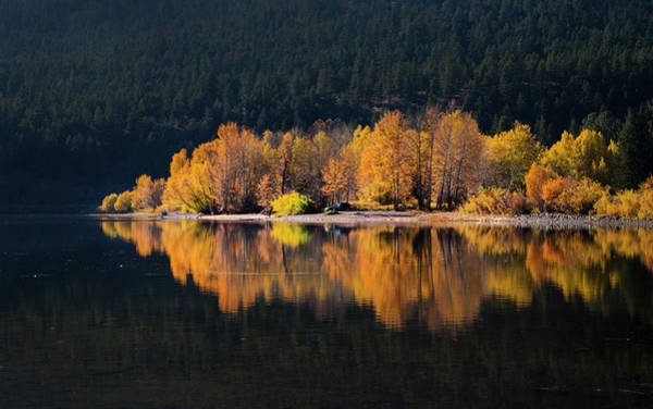Photograph - Autumn Days by Theresa Tahara