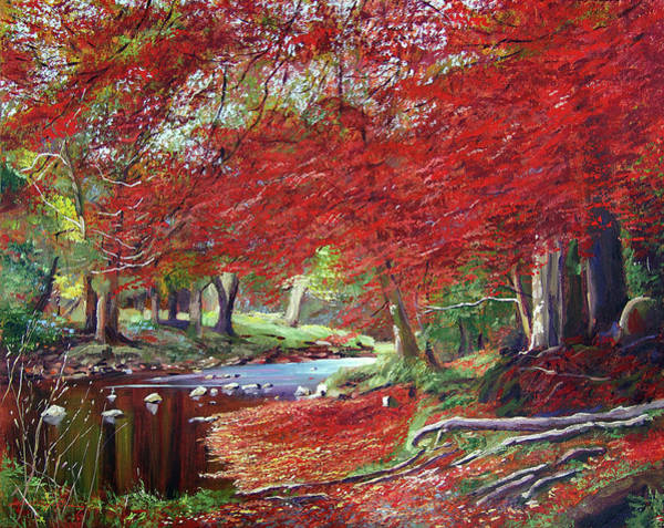 Painting - Autumn Fire Colors by David Lloyd Glover