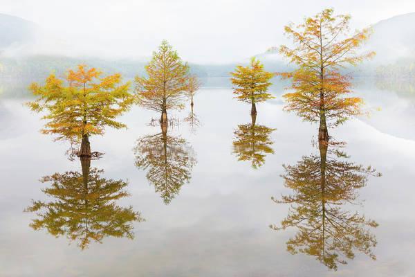Photograph - Autumn Float by Debra and Dave Vanderlaan