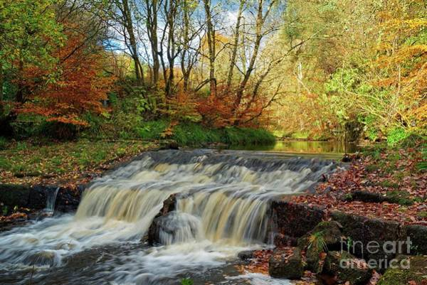 Photograph - Autumn Flow by David Birchall