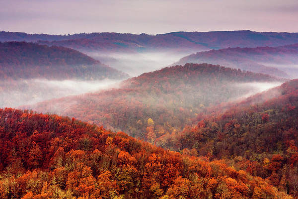 Photograph - Autumn Fogs by Evgeni Dinev