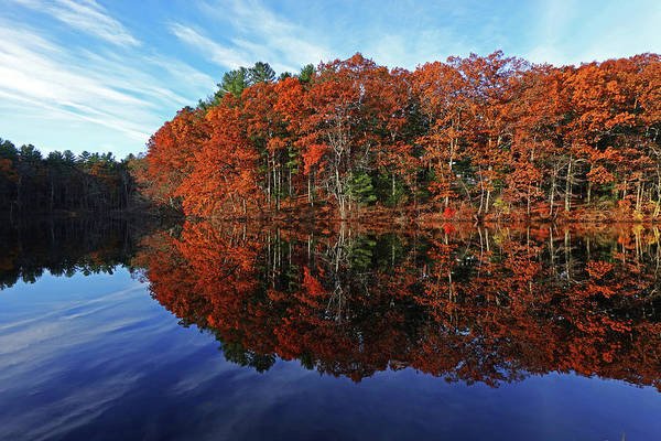 Photograph - Autumn Foliage On Stearns Millpond In Sudbury Ma by Toby McGuire