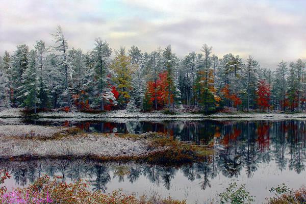 Michigan Wall Art - Photograph - Autumn Frost by Michael Rucker