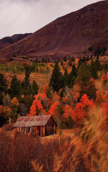 Wall Art - Photograph - Autumn Glow At The Old Cabin by Mike Herron