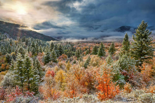 Autumn Grandeur Art Print by Leland D Howard