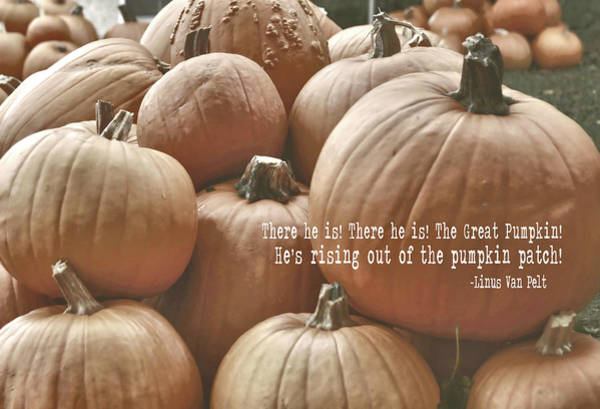 Photograph - Autumn Harvest Quote by JAMART Photography